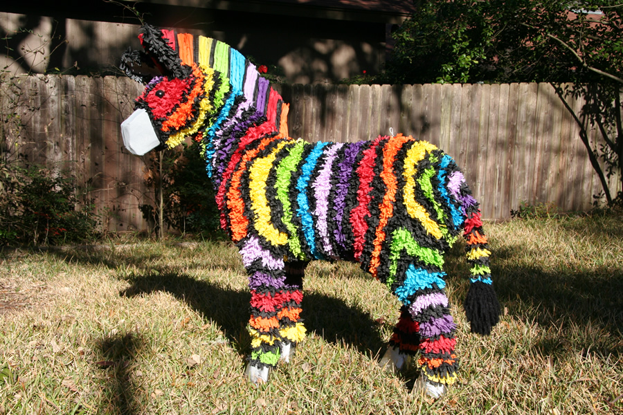 Home - Rainbow Zebra 2